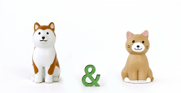 イヌ&ネコ